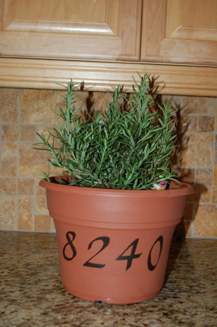 personalized pot